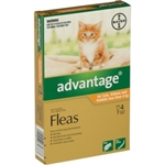 Advantage Small Cat & Kitten under 4kg 4 pack-flea-|-worm-The Pet Centre