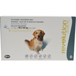 Revolution Flea Treatment for Dogs 20-40g 6 pack-dog-The Pet Centre