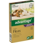 Advantage Flea Treatment for Cats over 4kg 4 pack-topical-flea-treatments-The Pet Centre