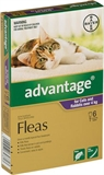 Advantage Flea Treatment for Cats 4-8 kg 6 Pack-cat-The Pet Centre