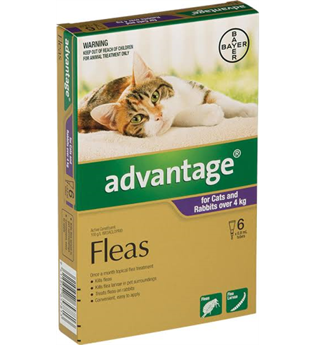 Advantage Flea Treatment For Cats Review