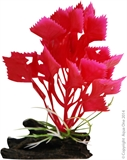 Aqua One Plastic Plant - Red Varigated Hygrophila With log Base Small-decorations-The Pet Centre