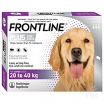 Frontline Dog 20 - 40kg - 3 pack-dog-The Pet Centre