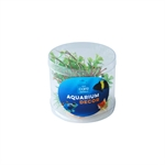 Aqua Care Artificial Plant Mini Tube of 4 No30-artificial-plants-The Pet Centre