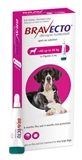 Bravecto Dog Spot On 40-56kg -dog-The Pet Centre