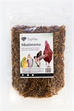 Topflite Dried Mealworms 125g-fish-The Pet Centre