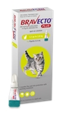 Bravecto Cat Plus 1.2 - 2.8kg-cat-The Pet Centre