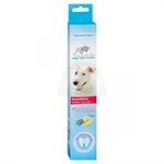 AFP Toothpaste - Vanilla Ginger Flavoured-dental-care-The Pet Centre