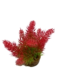Plastic Plant - Bottlebrush Leaf Assorted-artificial-plants-The Pet Centre